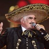 Vicente Fernández - Un Millón De Primaveras (DJ David Madrigal - Extended )BUY=FREE DOWNLOAD