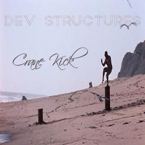 Crane Kick Prod. by Dev Structures