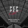 NekliFF & Mary S.K. - Parallel Life (Original Mix)