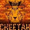 Cheetah Future House [buy Free Download] Mp3