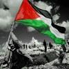 Download موال . فلسطين . علي راياتك. يا طير الطاير . أمير دندن Mp3