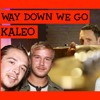 Kaleo - Way down we go (french cover Frank Cotty)