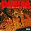 Pantera - Floods (Outro cover)