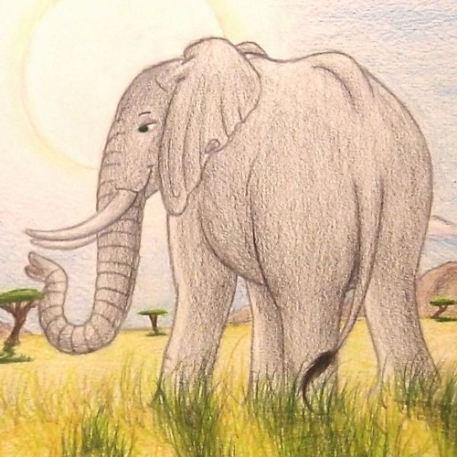 Episode-037 with The Friendly Elephant
