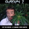 C'est pas sorcier - Le cannabis (REMIX HARDTEK)