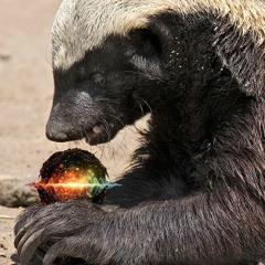 ₿ Quantum Badger -- Featuring Andreas Antonopoulos