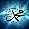 Download أنشودة صلى الله على محمد - أداء عبد الله عبد الناصر Mp3