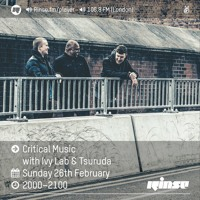 Critical Sound No.40 | Ivy Lab & Tsuruda | 26.02.2017