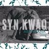 Syn KwaQ -New Balance- Arewhana Gang mp3