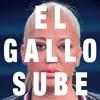 Belén Esteban - El Gallo Sube