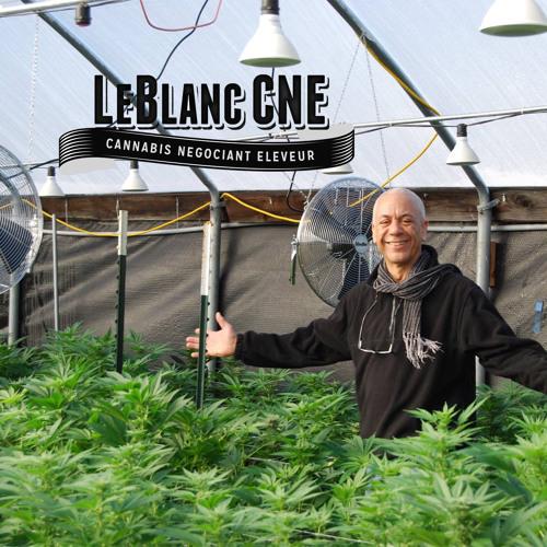 The LeBlanc CNE Podcast