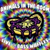 Animals in the Room - Live @ Bass Waffles