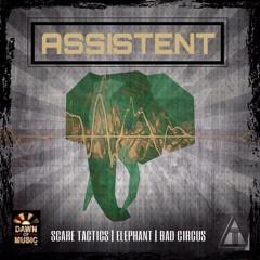 Assistent - Elephant (demo cut)