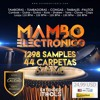 Extended iTools Samples - Mambo Electronico (Audio Demo) mp3