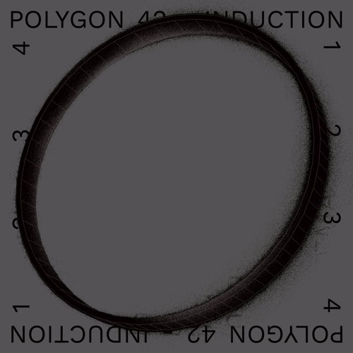 Polygon 42 - Induction 1