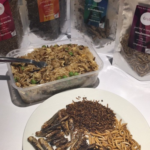 1st March 2017 - Eating Insects - Annem Hobson from So Wrong It's Nom on TalkSPORT with Alan Brazil