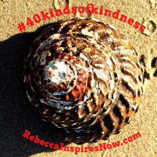 #40kindsofkindness meditation