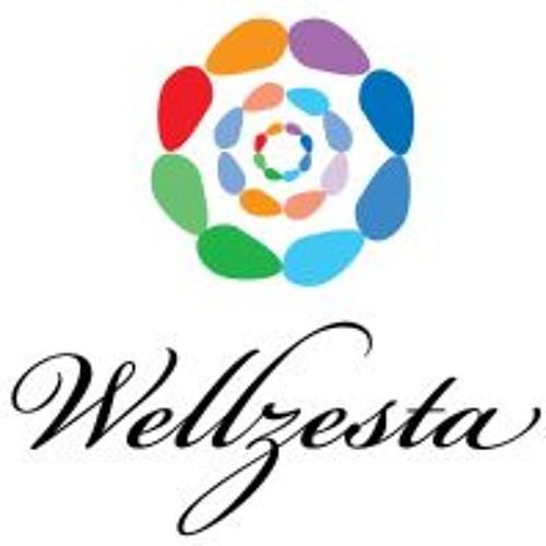 Ep. 13 - Wellzesta with John Robinson