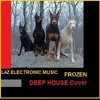 FROZEN (DEEP HOUSE) Cover by Laz Electronic Music FREE DOWNLOAD