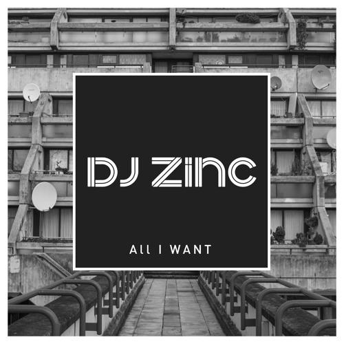 DJ Zinc - All I Want