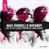Max Vangeli x DATABOY - Top Of My Lungs (Promise Land Remix) mp3