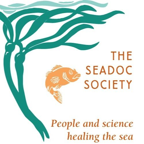 An Interview with Markus Naugle, Regional Director for the SeaDoc Society