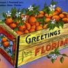 The Bard of Florida