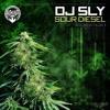 DJ SLY - 909