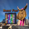 Download Burnt Furr (Pink Omega, Furr x Shawn Wasabi, Burnt Rice Mashup) Mp3