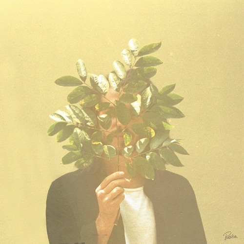 French Kiwi Juice Album