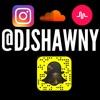 DJ Shawny ~ Go Crazy Go Stupid (Preview)