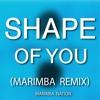 Shape Of You (Marimba Ringtones Remix)