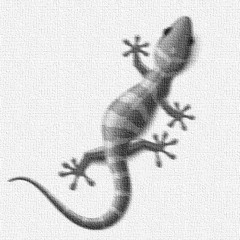 Charlie G & Vandall Vs Beltek Vs Mauro Picotto - Lizard Machine (Stromlighter Rework Mashup)