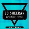 ed sheeran   supermarket flowers pur3 remix