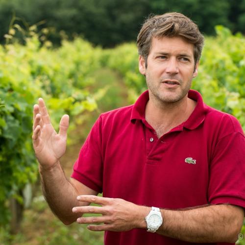 IDTT Wine 411: Arnaud Lambert