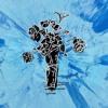 Supermarket Flowers - Ed Sheeran mp3