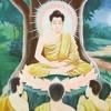Dhammapada Capitulo 19 - Dhammatthavagga: O Justo