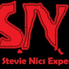 The Stevie Nics Experience Episode 16 With Shane Guilfoyle  From The History Of Hockey Podcast