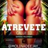 Calle 13 - Atrevete Te Te - (MolinaDeejay) (2)