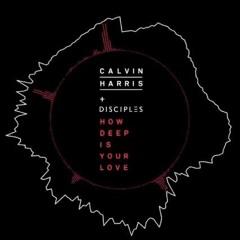 Calvin Harris & Disciples - How Deep Is Your Love (Arrowmatt Remix)