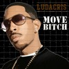 Ludacris - Move Bitch (REX CASTILLO )