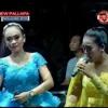 Janji Devi Aldiva ft Riza Marcela New Palapa Wong Ngujung Bersatu Rembang 17 Oktober 2016