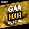 Hurling brain surgeons, scary Brian Cody and the plight of Antrim