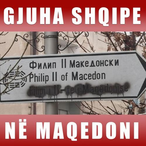 Emisioni 22 - Gjuha Shqipe në Maqedoni