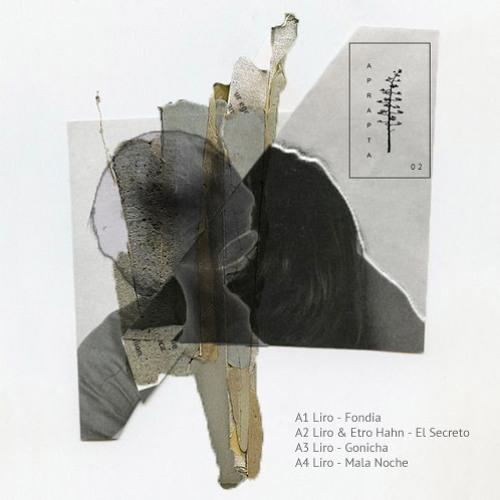 Liro - Fondia EP - Aprapta Music 02