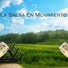 La Salsa En Movimiento
