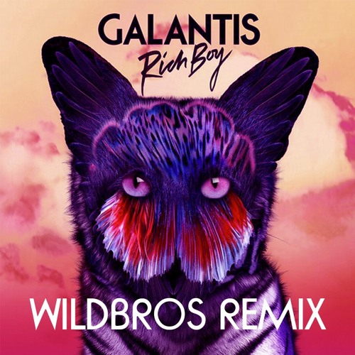 Galantis - Rich Boy (WildBros Remix)