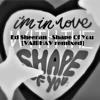 Ed Sheeran - Shape Of You [Rave Head Remixed]
