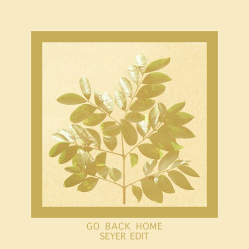 FKJ - Go Back Home(Seyer Edit)
