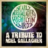 Nearly Noel Gallagher's Highflyin Birdz - Stop Crying Your Heart Out